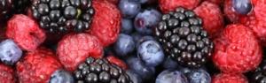 rote, blaue und schwarze Beeren